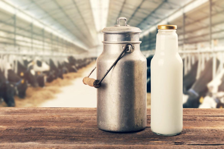 Milch Mythos
